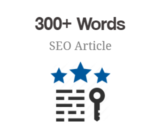 300+ Words SEO Article