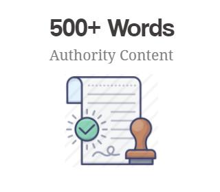 500+ Words Authority Content