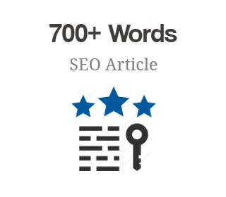 700+ Words SEO Article