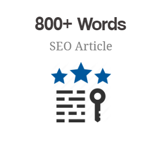 800+ Words SEO Article